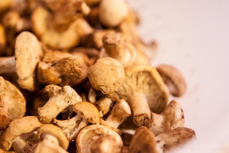 Risotto aux champignons et à l'ail nouveau